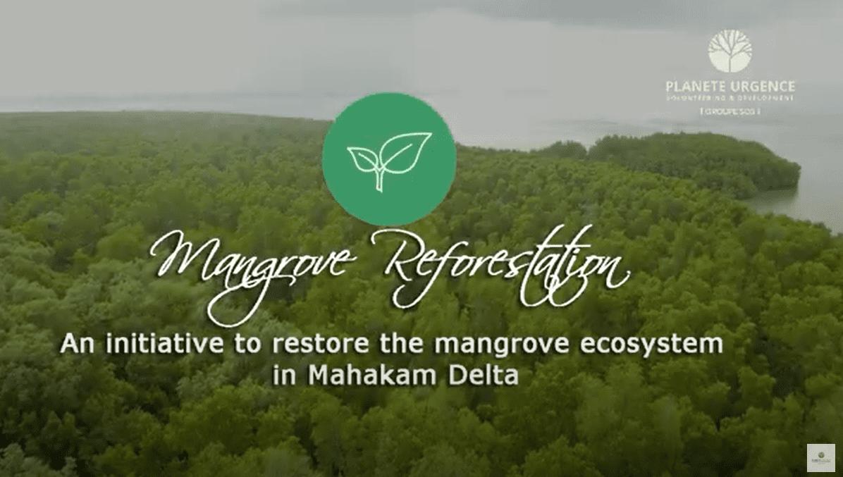 Vidéo lutte contre la déforestation